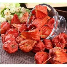 100 PCS Red Currant Fruit Plant Pan-American Gooseberry Lantern Fruit Physalis Landscape Home Garden For Flower Pot Planters