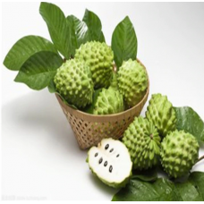10 Pcs Sweetsop Fruit Custard Apple Buddha's Head Fruits Cherimoya Sugar Apple Annona Tree